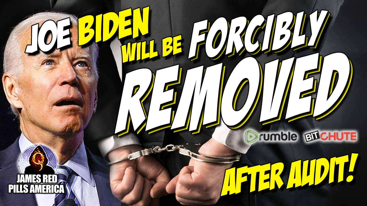 Bombshell New Interview! Fake President Joe Biden Will Be Forcibly Removed From Office After Audit! Roger Stone Is a Moron!  Must See!